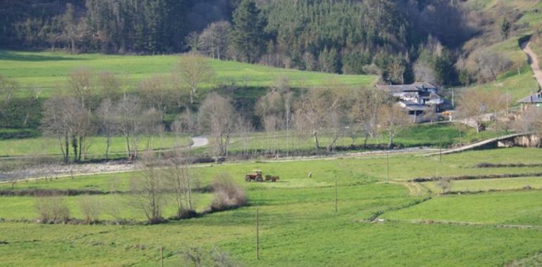 la servidumbre de paso asturias mundial