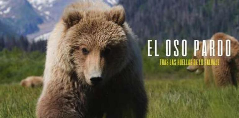 Apoya el documental sobre la superviviencia del Oso Pardo